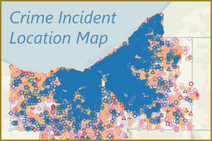 Crimes By Incident Location